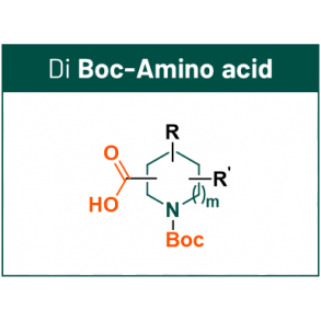 DEL scaffolds with 2 synthetic handles: Boc-Amino Acid