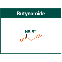 Butynamide fragments