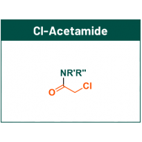 Cl-Acetamide fragments