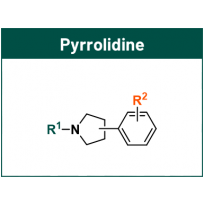 Pyrrolidine for PROTACs