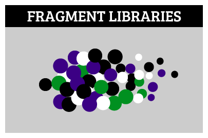 Fragment Libraries