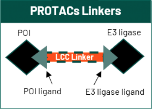Linkers for PROTACs